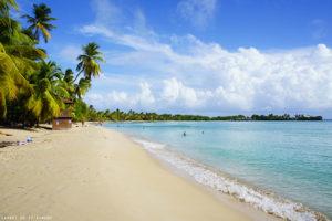 Les Salines (Martinique)